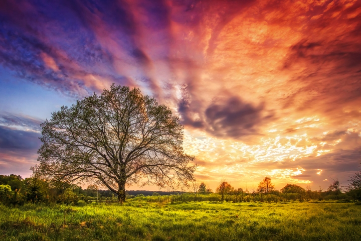 Majestic Landscape Of Bright Colorful Sunrise Over Rural Meadow